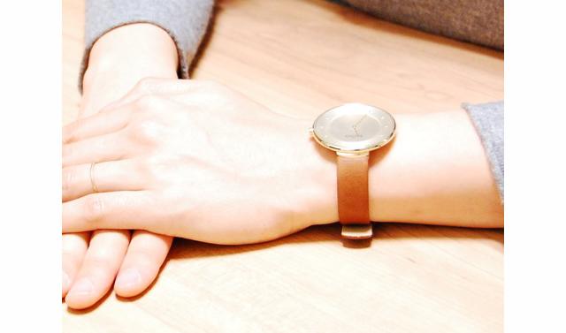 スカーゲン腕時計革ベルト
