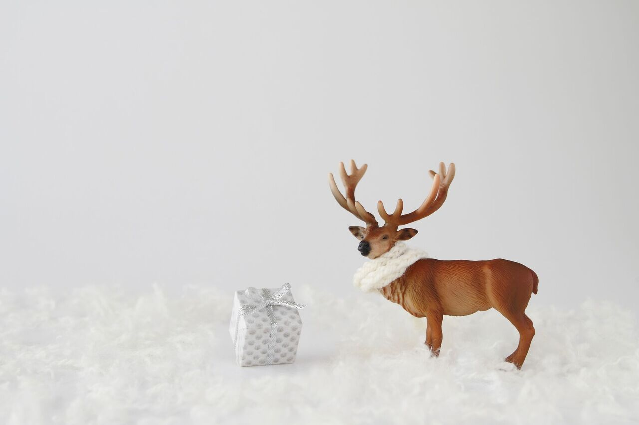 30代女性へのクリスマスプレゼントにはデザイン性に優れたオシャレな長財布が喜ばれる!